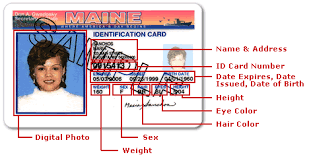 Online License Driver's Details Service Card Replacement amp; Id Renewal