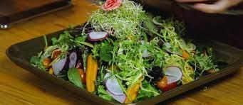 Chef Malu Mello ensina como fazer uma salada refrescante de verão