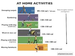 Exercise Stress Test Mets Chart Laymans Guide To Mets Insights