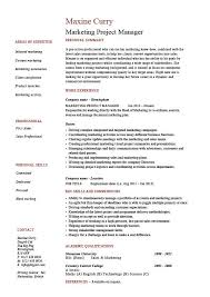 Marketing project manager resume, drumming up business, sample, example,  generating sales, CV layout