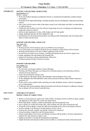 Tableau Sample Resumes Amazing Tableau Developer Resume Doc Gallery Example Resume 91