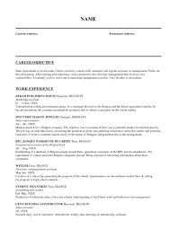 Objective Forme Marketing Sample Career Of Executive Sales The