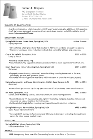 fake resume example