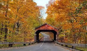 scenic fall foliage tours in michigan