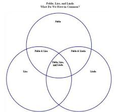 Comparison Venn Diagram Venn Diagram Of Students What Do We Three Have In Common