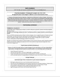 It Director Resume Samples Executive Examples And Manager Sample