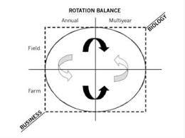 Crop Rotation Chart Crop Rotation And Farm Management