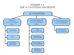 Accounting Position Hierarchy Chart Management Accounting Chapter 1