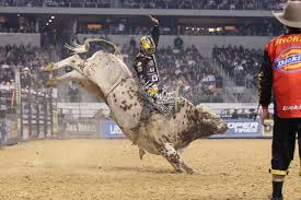 pro bull riding.  Pro View Full SizePhoto ProvidedProfessional Bull Rider Luke Snyder Will  Compete At The Philadelphia Invitational Wells Fargo Center Friday And Saturday And Pro Bull Riding