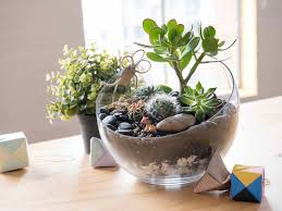 how to make your own terrarium. Perfect How How To Make A Terrarium With To Make Your Own Terrarium O