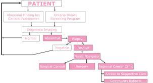 Patient Pathway Bap Hotel Dieu Hospital