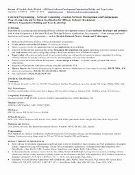 Sample Resume For Experienced Net Developer Best Sample Entry Level