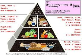 Low Fat Diet Wikipedia