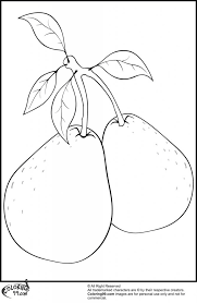 Small Picture Free Printable Two Pears With Leafs Also Branches Coloring Pages