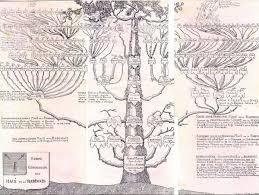 Arbre Genealogique Des Mace De La Rabinais Arbre G N Alogique