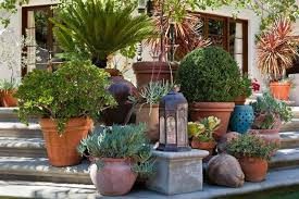 Container Garden Design Interesting Ideas