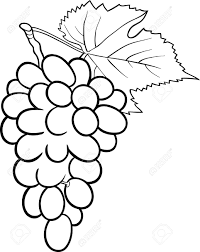 grapes clipart black and white. pin grapes clipart black and white #4 p