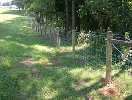 wooden farm fence. This Farm Fencing Has Wooden Posts, Metal Panels And Barbed Wire On Top. Fence C