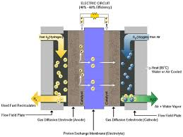 anode hydrogen is oxidized 2h2 4h 4e membrane protons diffuse across cathode oxygen from air is reduced o2 4h 4 e 2h2o heat