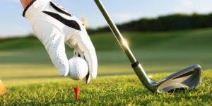 Resultado de imagen para hoteles con campo de golf en republica dominicana