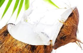 Nuca de cocos : unul dintre cele mai mari daruri ale planetei