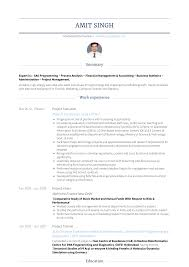 Project Executive Resume Samples And Templates Visualcv
