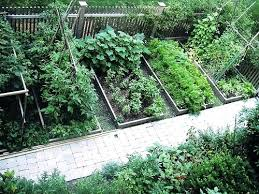 vegetable gardens designs garden ideas designs raised gardens bed design plans organic gardening small vegetable architecture