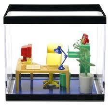 office fish. Office Fish Aquarium Tank For The O Best Tanks P