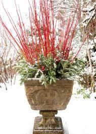 Container Garden Ideas  HGTVContainer Garden Ideas For Winter