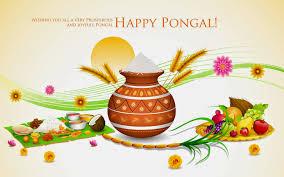 happy sankranthi to everyone chandra nandini forum image result for surya pongal greetings