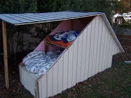 cat house plans. cat house 8 steps inside outdoorcathouseplans plans