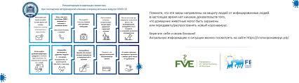 Ветеринарная клиника «Фаворит» в Мурманске