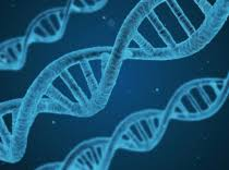 «Тексты правят только молодые ученые. Нобелевские лауреаты ...