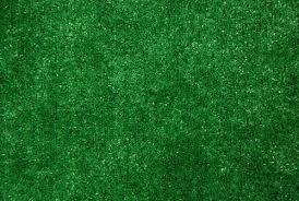 Dean IndoorOutdoor Artificial Grass Turf Area Rug 6x8