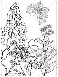 decorative flowers birds and erflies coloring book for and older children coloring