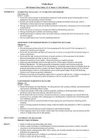 Marketing Manager Resume Examples Of Resumes How To Build A Strong