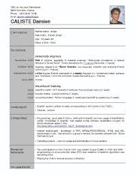 French Resume Examples French Resume Example Examples Of Resumes 2