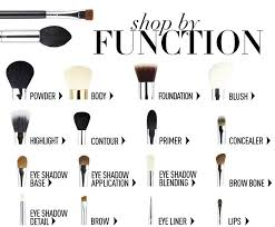 makeup brushes and their uses. makeup brushes and their functions | brushes, eye uses d