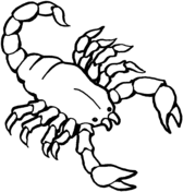 Small Picture Scorpions coloring pages Free Coloring Pages