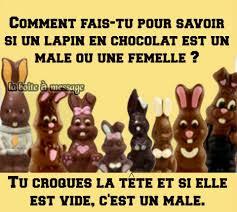 ᐅ 13 Humour Pâques Images Photos Et Illustrations Pour Facebook