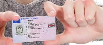 Renewal Office® Driving Uk License Post Photocard tFxHq