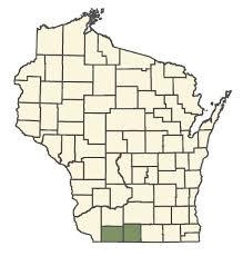 Bunias orientalis - Online Virtual Flora of Wisconsin