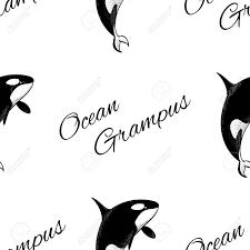 Grampus Orka Naadloze Patroon In Doodle Stijl Op Een Witte