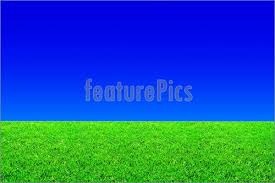 Rural Landscapes Green Grass Blue Sky Stock Picture I3305252 at