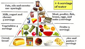 How To Make A Healthy Diet Chart Balanced Diet Chart Making The Web Com