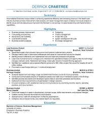 Business Analyst Resume Sample Distinctive Documents