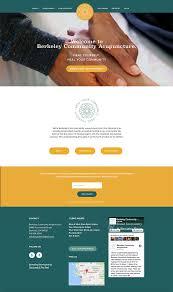 Acupuncture Web Design Website Design And Copywriting For Berkeley Community