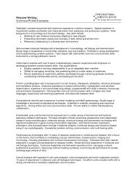 Resume Examples Of Summary On Resume Examples Of Professional Magnificent Professional Summary On A Resume Examples