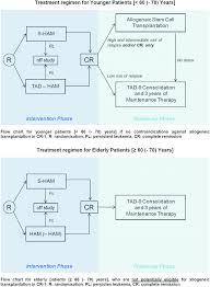 Flow Chart Of Protocol Treatment Download Scientific Diagram