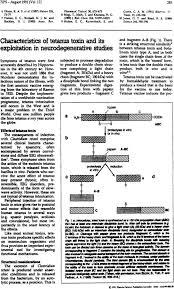 tetanus toxin characteristics of tetanus toxin and its exploitation in